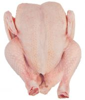 Processed Halal Certified Frozen Whole Chicken