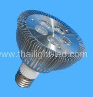LED Par Light (PAR30 Lamp)