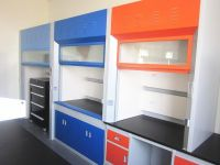 laboratory furniture China professional medical/ lab fume hood manufacturer