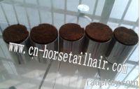 horse body hair