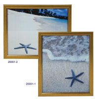 Plastic Picture Frame