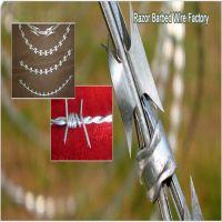 Razor Barbed Wire Fence / Razor Wire Concertina