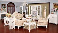 Elegant European style living Room Furniture