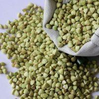 buckwheat kernel hulled green