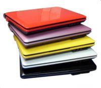 10.2 inch laptop Intel Atom D2500 dual core 1.8GHz RAM 1G /2GB/4GB HDD 160GB/250GB/320GB/500GB Mini Laptop