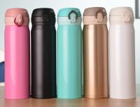 stainless steel vacuum bottles