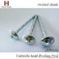 Roofing nail, twisted shank, umbrella head