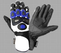 Motorcycle Glove