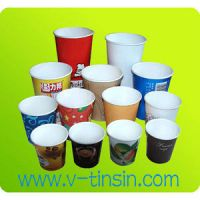 Paper Pastel Cups