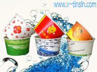 Hot Times Fiesta Paper Bowls