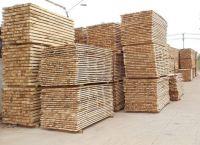Rubber wood finger/ACASIA wood finger/oak wood finger/solid ash wood