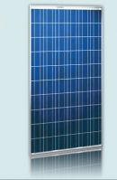 245W Polycrystalline Solar Panel