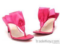 ladys shoe