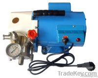 DSY Portable Motor Test Pump
