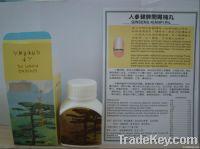 ginseng kianpi pill ginseng kianpi capsules gray/white bottle