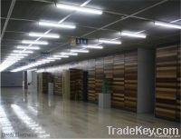 Led Tube Light T8 13W