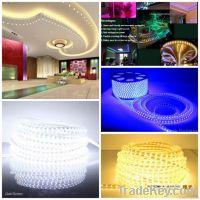 Flexible Led Strip Lighting Smd 3528/5050 Waterproof IP65