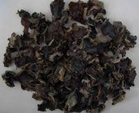dried auricularia auricula