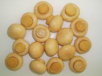 400g canned mushroom