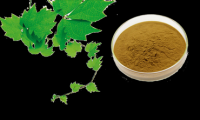 Selling Plant Extracts.