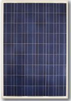 215W max power polycrystalline silicon solar module