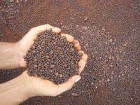 Manganese Ore lump form