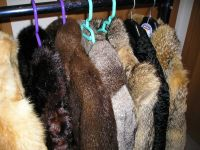 fine fur jackets, mix of all colours, makes and sizes