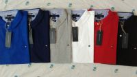 Tommyhilfiger Polo in wholesale