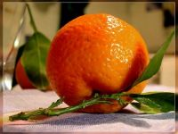 "Mandarin ""kinnow"" from Pakistan"