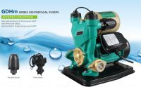 High Head Self-Priming Electric Garden Pumps