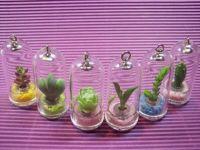 Pet tree key chain, mini plant, pocket plant, mini flower