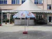 """Beach Umbrella (52""""x8k)"""