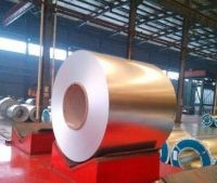 rolled galvanized  ppgi ppgl steel coils for roofing sheet
