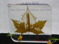 natural leaf carves------World exclamation