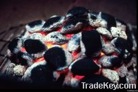Coking Coal | Steam Coal & Met Coal