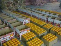 Orignal Mandarin Oranges Sargodah Pakistan
