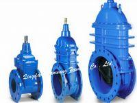 gate valve body 001