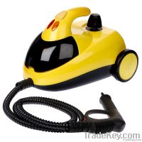 steam cleaner, steamer, carpet cleaning