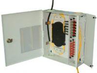 Digital Video Over Fiber Transmission