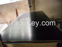 Recycled Black Film Faced Plywood for Construction