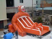 Inflatable long slide