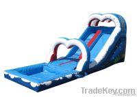 Long pool slide 2013
