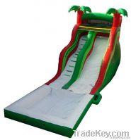 Multi person pool slide 2013