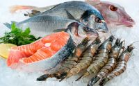 Best Frozen Seafood Fishes, Shrimps, Crabs, Pallocks, Fillets, catfish, Squid, Octopus, Lobster