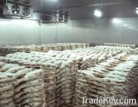 cold room for keeping food  frozen