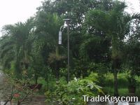 Solar LED Garden Light SG630