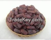 Fresh and Dry Dates