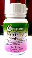Moringa Oleifera Capsules ( Thanks Giving Tree )