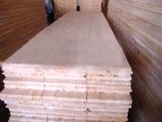 Paulownia Lumber Board