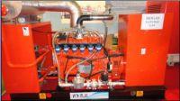 Biogas and Natural Gas Generator Set